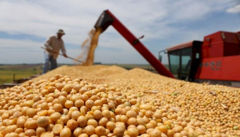 Mato Grosso tem crescimento de exportação no semestre e soja puxa o mercado